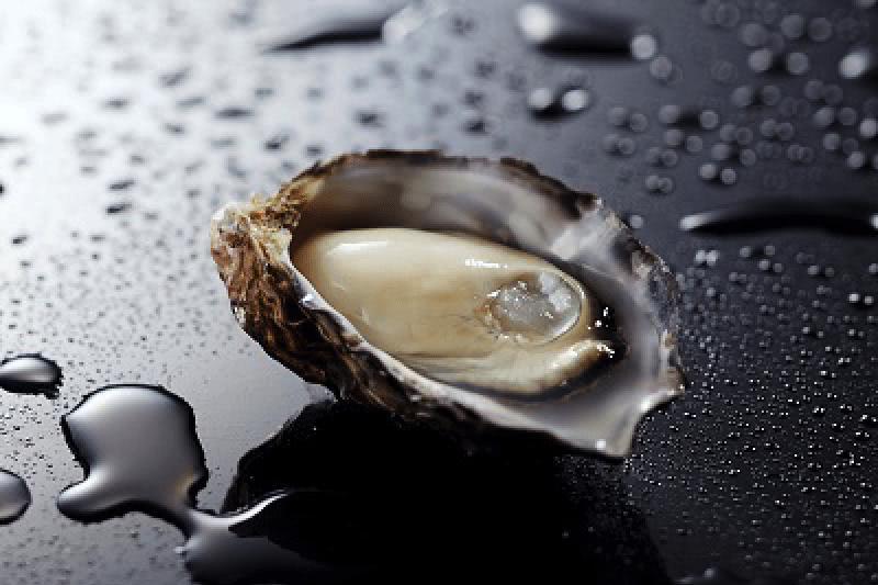 「日本一、牡蠣を見ている男」がつくる美しい牡蠣、くにさきオイスター