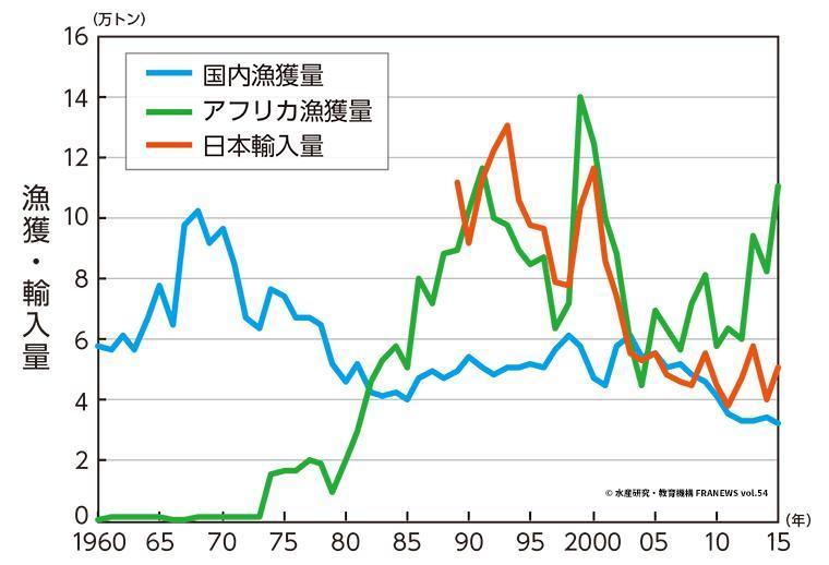 マダコを含むタコ類の国内漁獲量と輸入量の推移グラフ