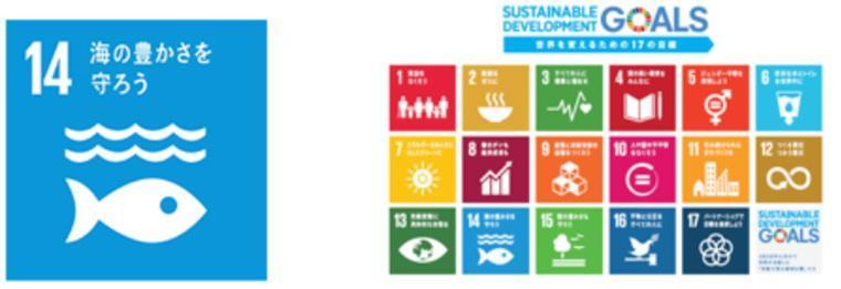 SDGs 14 のロゴには、「海の豊かさを守ろう」というキャッチコピーがある