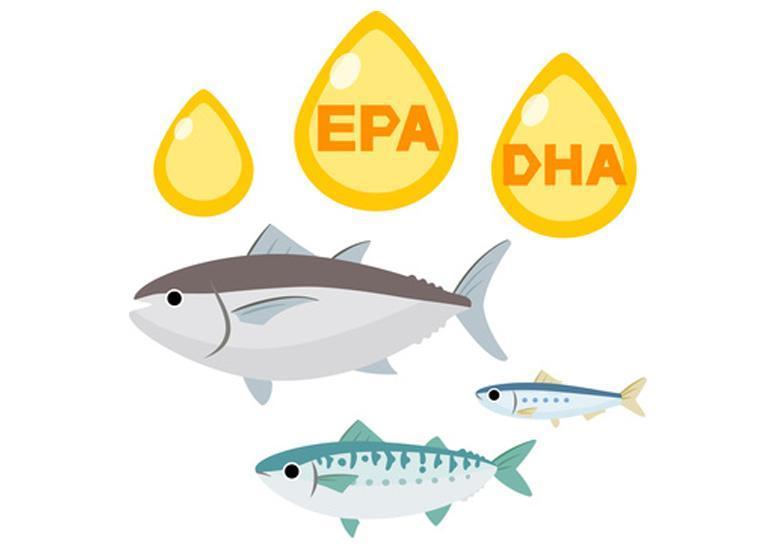 魚にはEPAやDHAが含まれる
