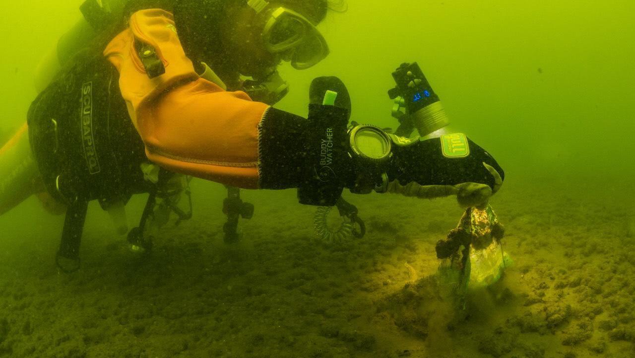 ダイバーが海底のゴミを拾う様子