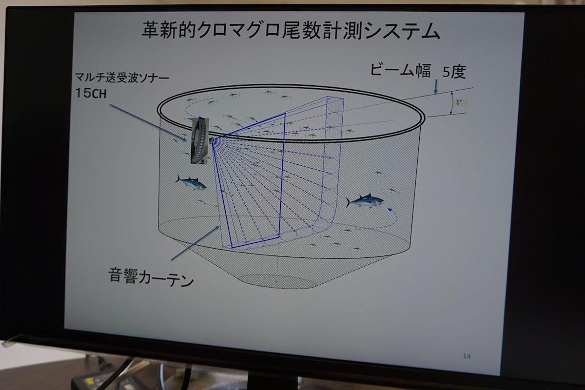 ソナーから音波が放出され、音響カーテンを作るイメージ図