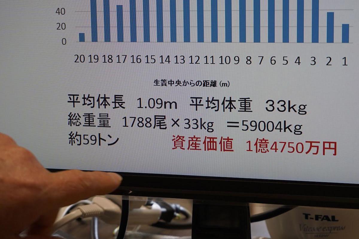 説明資料「1788尾×33kg 資産価値 1億4750万円」