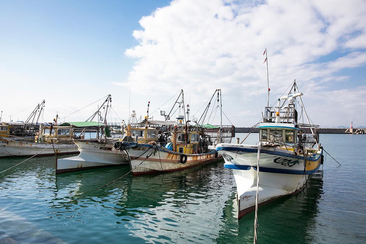 港に並ぶ漁船