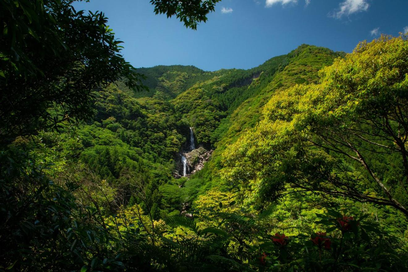 那智勝浦の山の写真