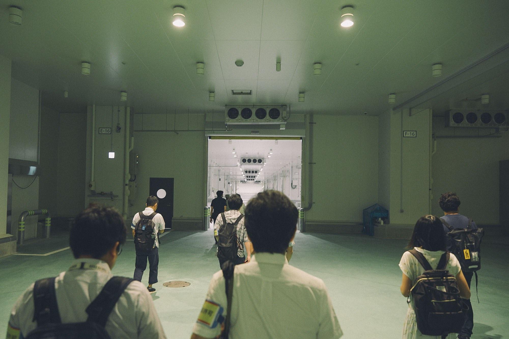 豊洲新市場を歩く取材陣の写真