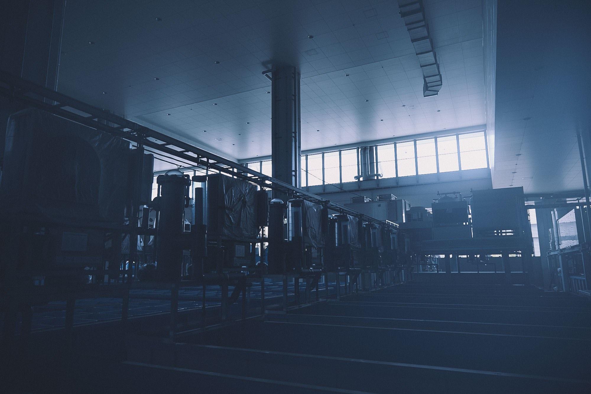 豊洲新市場の内部の写真