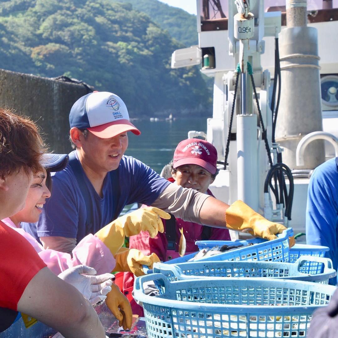 三重県尾鷲市須賀利町で魚を仕分ける様子の写真