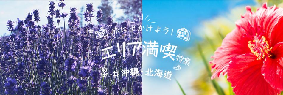 北海道・沖縄特集(宿泊)