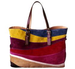 ヒラリー・スワンクさん愛用のコーチのバッグ