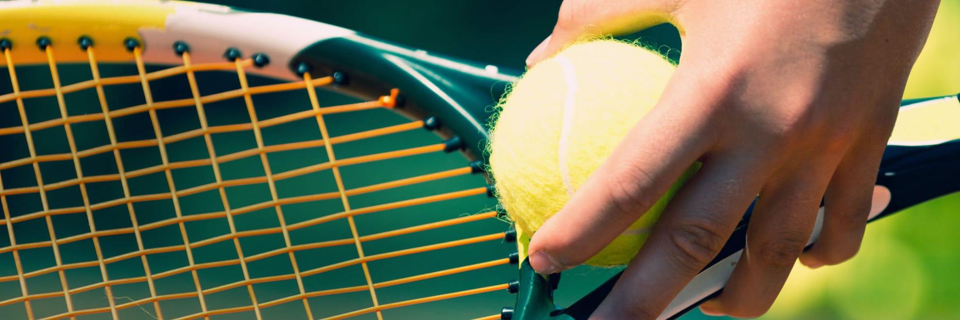 スポーツの画像