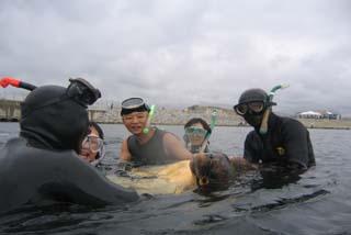 大阪湾ウミガメ保護プロジェクトの一場面