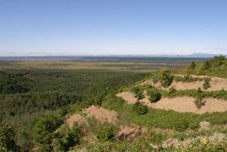 釧路湿原・水源地の森を守り育てる