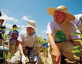 宮城県岩沼市でボランティアで参加した4500名の方と 30,000本の苗木を植樹
