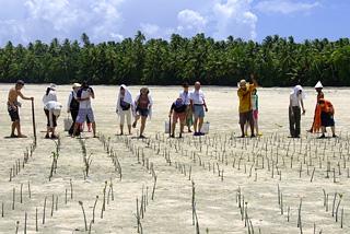 [海面上昇からツバルを救え! NPO Tuvalu Overview]の画像
