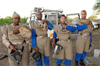 地雷撤去にのぞむヒーローラッツとAPOPOのスタッフ