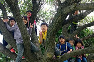 施設の子ども、里子、一般家庭の子ども達、みんなで楽しく遊ぶぐるーんのイベント