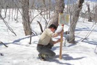 残雪期の至仏山で利用可能エリアの看板を設置
