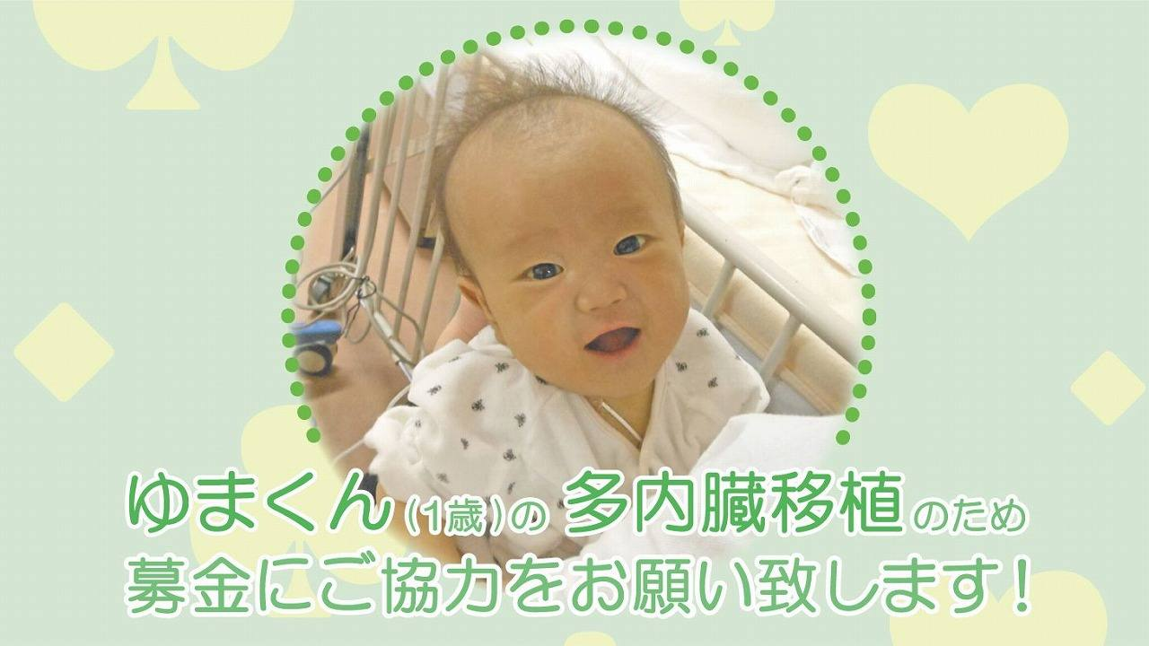 ゆまくん(1歳)を救うためにご支援をお願いいたします!