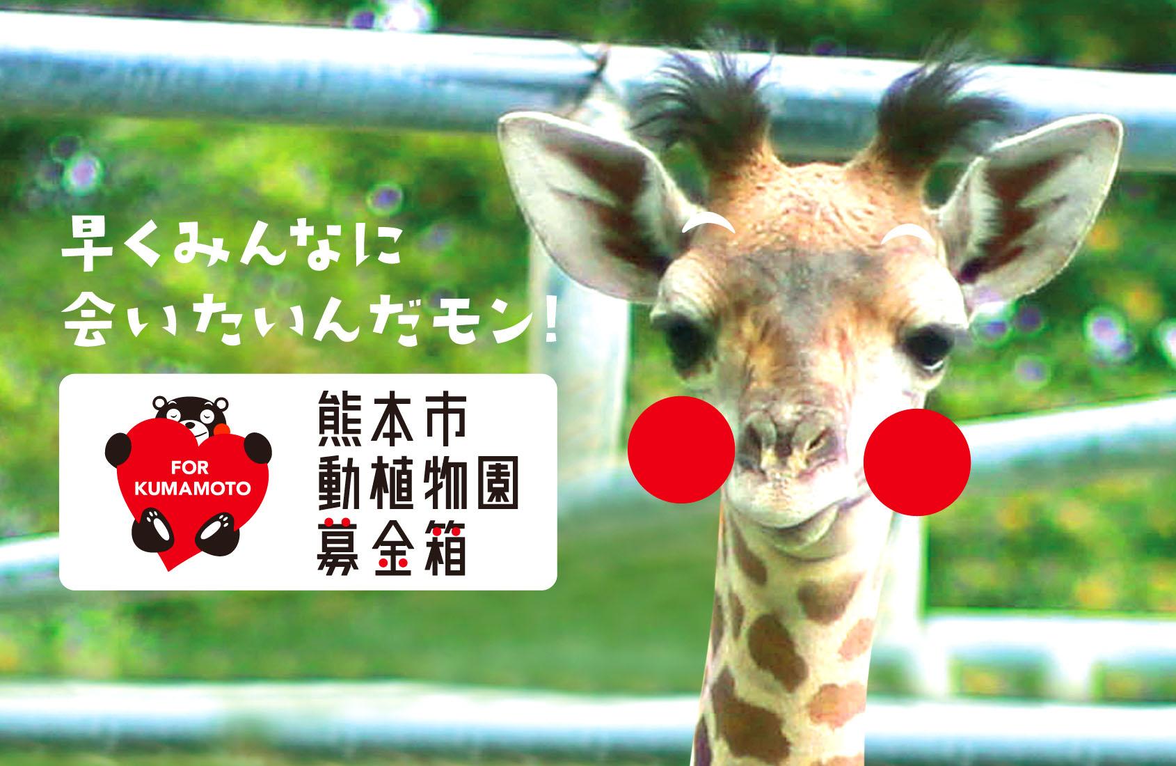 子どもたちの夢と教育の場「熊本市動植物園」にご支援を!!
