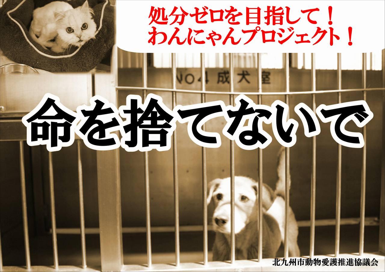 北九州市動物愛護推進協議会