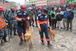 [ネパール地震・緊急募金(ピースウィンズ・ジャパン)]の画像