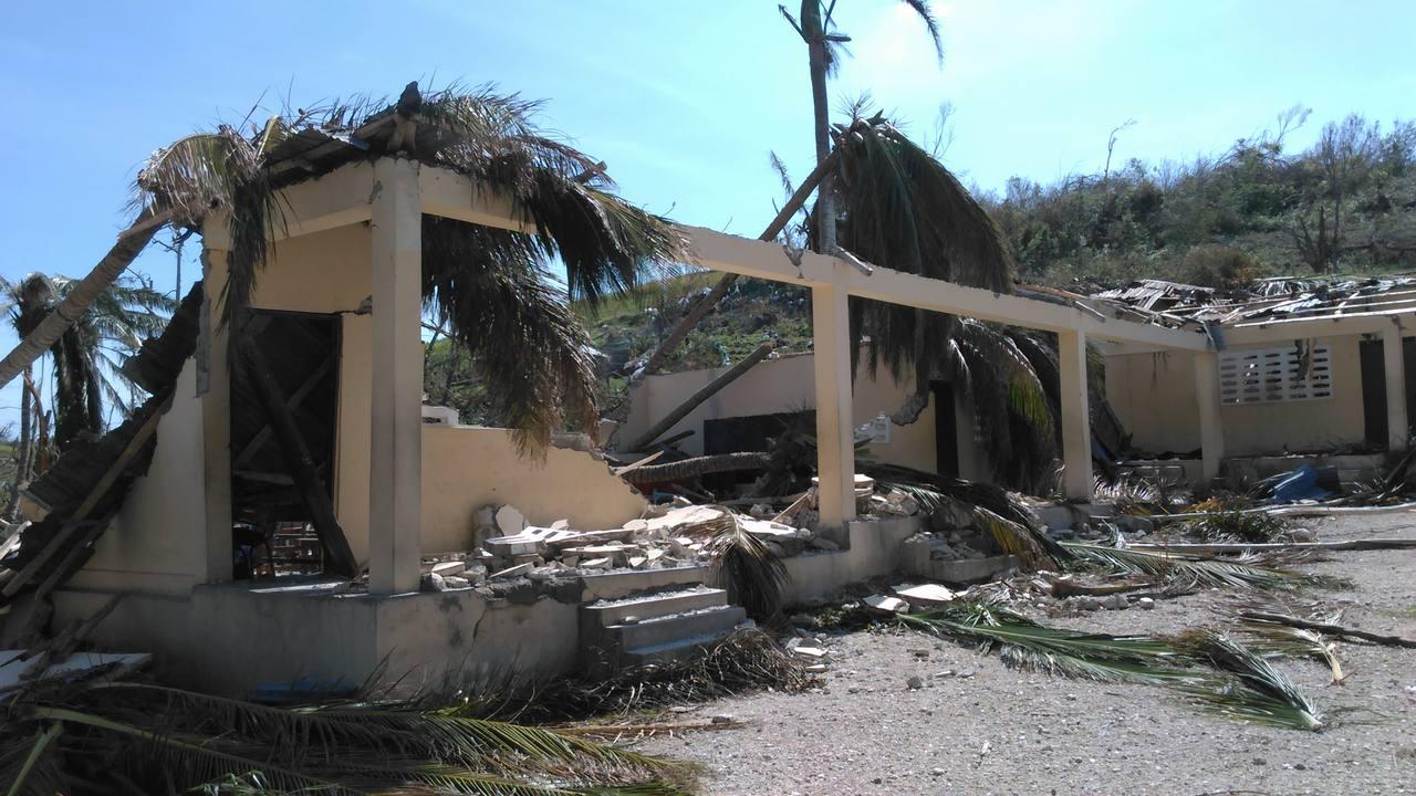 [ハイチハリケーン被災者支援・緊急募金(ピースウィンズ・ジャパン)]の画像