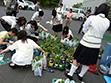 命の花プロジェクト。一つひとつに想いを込めて鉢あげをする高校生の皆さん。
