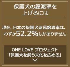 保護犬の譲渡率を上げるには 現在、日本の保護犬返還譲渡率はわずか52.2%しかありません ONE LOVE プロジェクト「保護犬を飼う文化を広める」