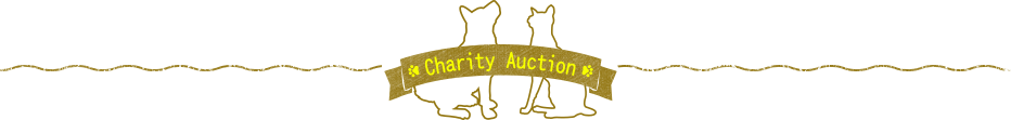 Charity Auction