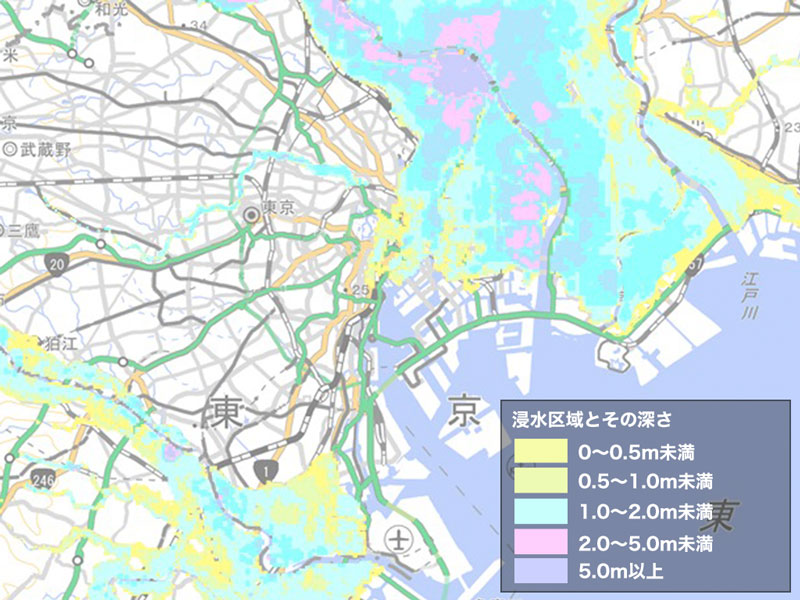 [東京都周辺の洪水区域の表示]