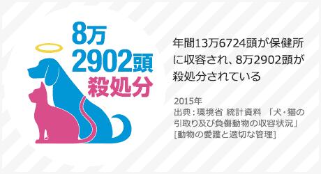 日本のペットの殺処分数