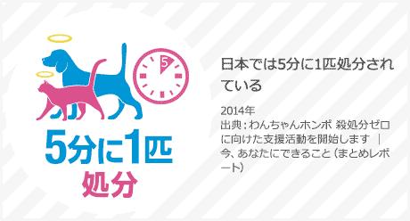 日本では5分に1度処分されている