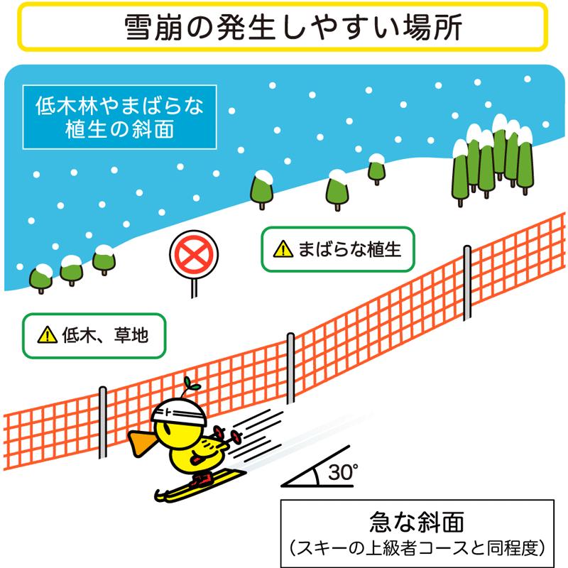 [雪崩の発生しやすい場所] 低木林やまばらな植生の斜面、急な斜面(スキーの上級者コースと同程度)