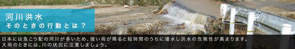 河川洪水 そのときの行動とは? 日本には急こう配の河川が多いため、強い雨が降ると短時間のうちに増水し洪水の危険性が高まります。大雨のときには、川の状況に注意しましょう。