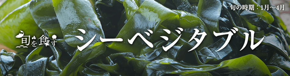 旬を食す シーベジタブル 旬の時期:1月~4月