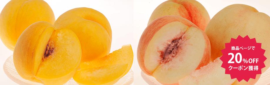 菱沼さんの桃『桃水&光月』 福島産