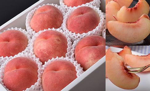 福島県 高橋もも園の白桃「シーエックス」 化粧箱入り 約3kg イメージ