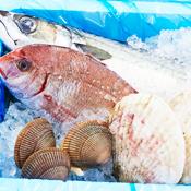 魚介類詰め合わせ