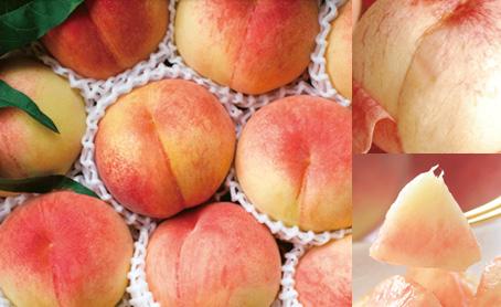 福島の桃 2kg 旬な品種をお届け