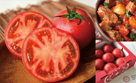 トロピカルトマト 糖度10以上厳選