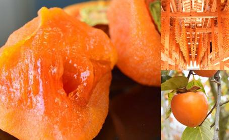 無添加干し柿「あんぽ柿」