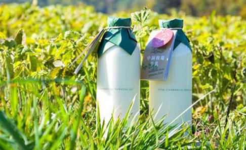 【TV紹介】自然放牧 中洞牧場牛乳の写真