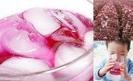 蔵王の無農薬手造り紫蘇ジュース