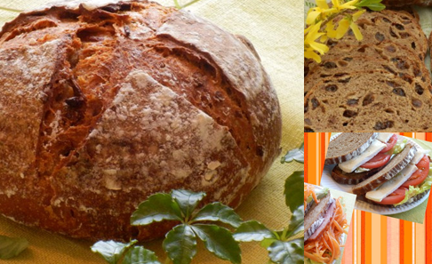 天然酵母 全粒粉 100% パン 3点セットの写真