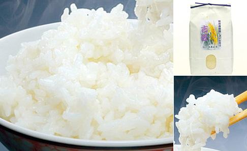 吉匠 特別栽培米コシヒカリの写真