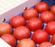 トマト詰め合わせ