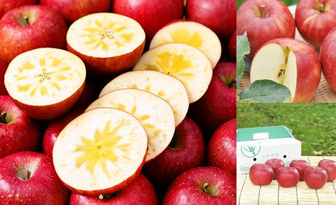 大野農園の選べる旬のりんご2kg(特秀6~7玉)