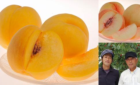 菱沼さんの桃『桃水&光月』 福島産 約2kg