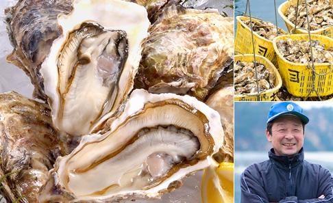 復興岬カキ60個セットの写真